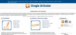 Cirugia Articular